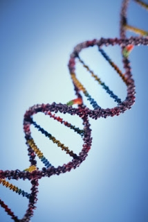 23andme and the FDA